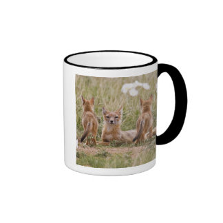 Swift Fox (Vulpes velox) female with young at Ringer Coffee Mug