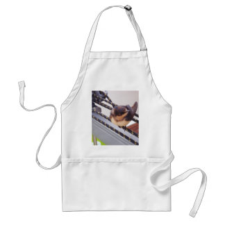 Swift Migrating By Yacht Adult Apron