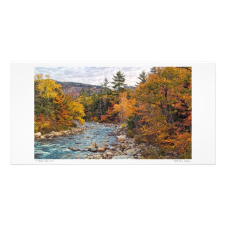 Swift River Autumn Photo Card