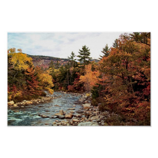 Swift River Autumn Poster