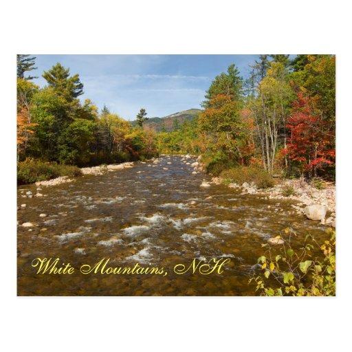 Swift River NH   Postcard