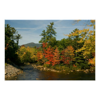 Swift River NH  Print