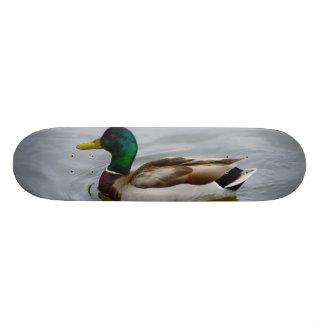 Swim Mallard Swim Skateboard