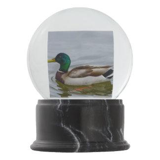 Swim Mallard Swim Snow Globe