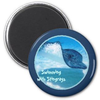 Swim with Rays 2 Inch Round Magnet