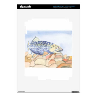 Swiming Trout watercolor Skins For iPad 3