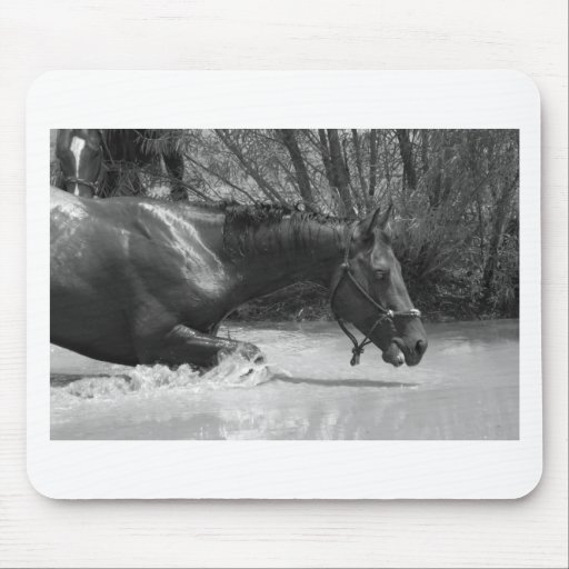 Swimming 103 mouse pads