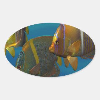 Swimming Angelfish Stickers