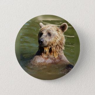 swimming bear button