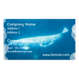 Swimming Beluga Whale Business Cards