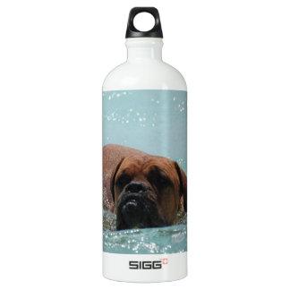Swimming Bordeaux SIGG Traveler 1.0L Water Bottle