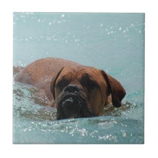 Swimming Bordeaux Tile