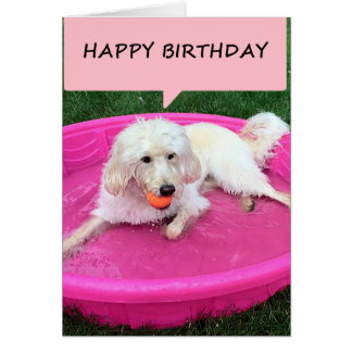 "SWIMMING DOG SAYS ""HAPPY BIRTHDAY""/""ENJOY"" CARD"