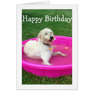 SWIMMING DOG SAYS HAPPY BIRTHDAY/HAVE FUN LIKE HIM CARD