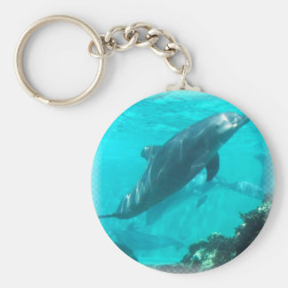 Swimming Dolphin Keychain