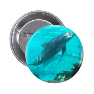 Swimming Dolphin Round Button