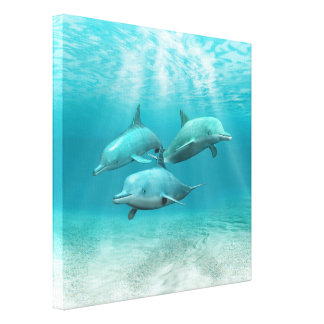 Swimming Dolphins Stretched Canvas Print