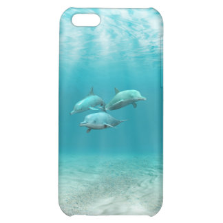 Swimming Dolphins iPhone 5C Case