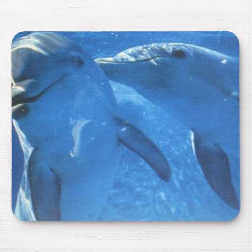 Swimming Dolphins Mousepads