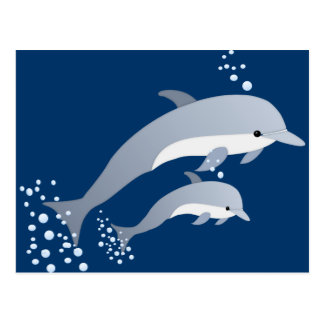 Swimming Dolphins Postcard