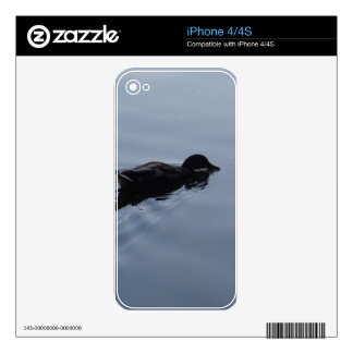 Swimming Duck in Lake, Nature Bird Wildlife Blue Skins For The iPhone 4