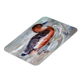 Swimming Duck Magnet