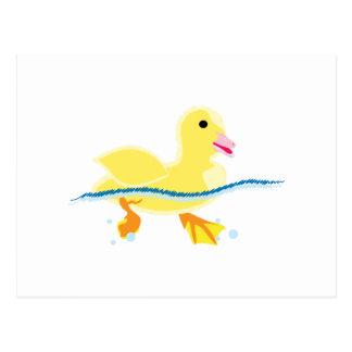 Swimming Duck Postcard