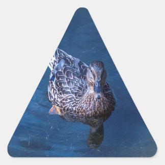 Swimming Duck Triangle Sticker