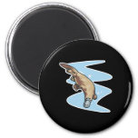swimming duckbilled platypus refrigerator magnets