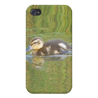Swimming Duckling Cases For iPhone 4