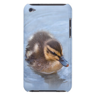 Swimming Duckling iPod Touch Case