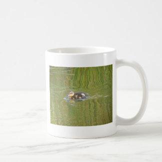Swimming Duckling Classic White Coffee Mug