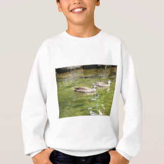 Swimming Ducks Sweatshirt