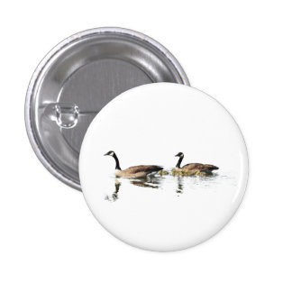 Swimming Geese Pinback Button
