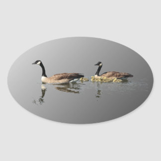 Swimming Geese Sticker