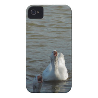 Swimming Geese with Open Mouths Case-Mate iPhone 4 Case