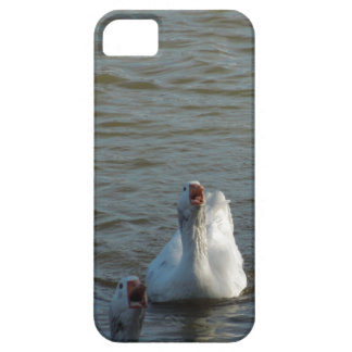 Swimming Geese with Open Mouths iPhone SE/5/5s Case