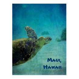 Swimming Hawaiian Sea Turtle Postcard