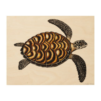 Swimming Hawksbill Sea Turtle Wood Wall Art