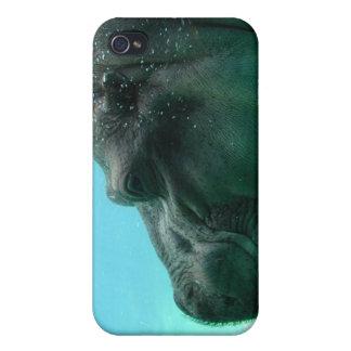 Swimming Hippo iPhone 4 Case