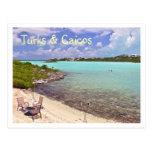 """swimming In Turks & Caicos"" Postcard at Zazzle"