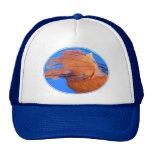 Swimming Jellyfish Hat