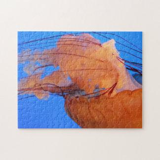 Swimming Jellyfish Puzzle