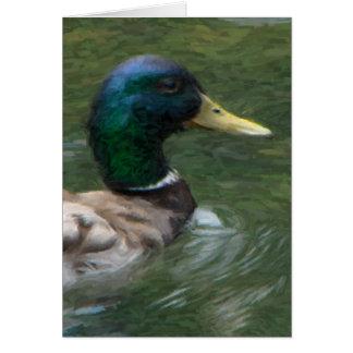 swimming mallard portrait card