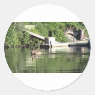 Swimming Moose Classic Round Sticker