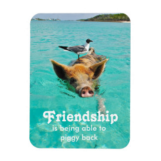 Swimming Pig Friendship Magnet