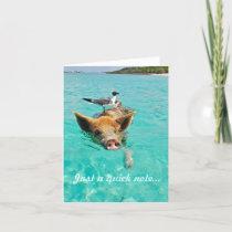 Swimming Pig Notecard