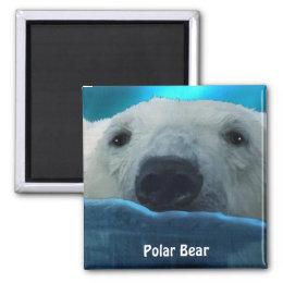 Swimming Polar Bear Arctic Wildlife Art Magnet