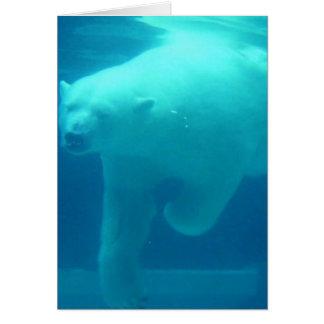 Swimming Polar Bear Greeting Card