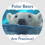 SWIMMING POLAR BEAR CLASSIC ROUND STICKER